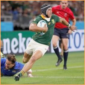 コルビ ラグビー 南アフリカ